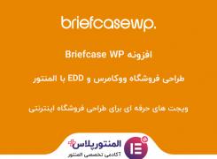 افزونه Briefcase WP